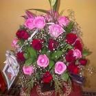 Bunga Meja di Medan
